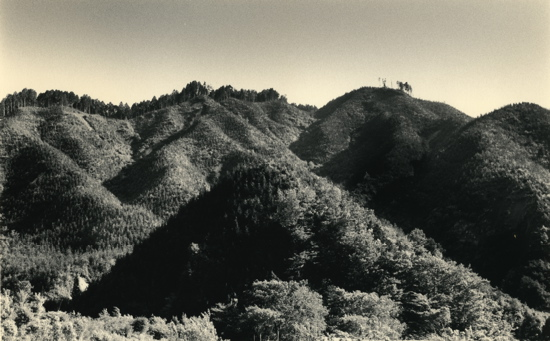 MY-1548 dans Photographie: Grands Photographes