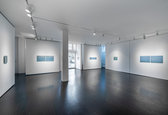 Incarnate Installation View